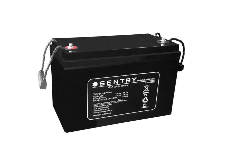 Sealed Performance Sentry 125AH AGM Battery